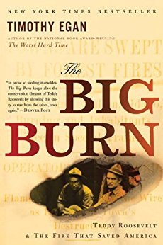Big Burn Teddy Roosevelt and the Fire That Saved America