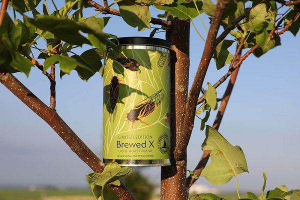 Brewed X From Chesapeake Bay Roasting Company